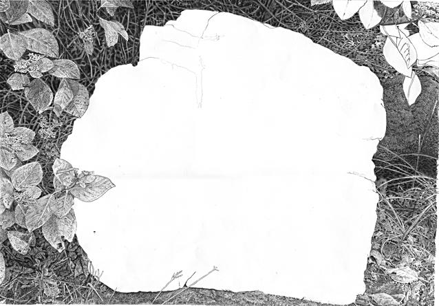 〇〇を描く15作目.jpg