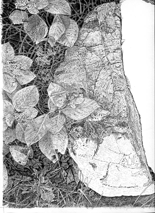 石を描く1作目途中経過2.jpg