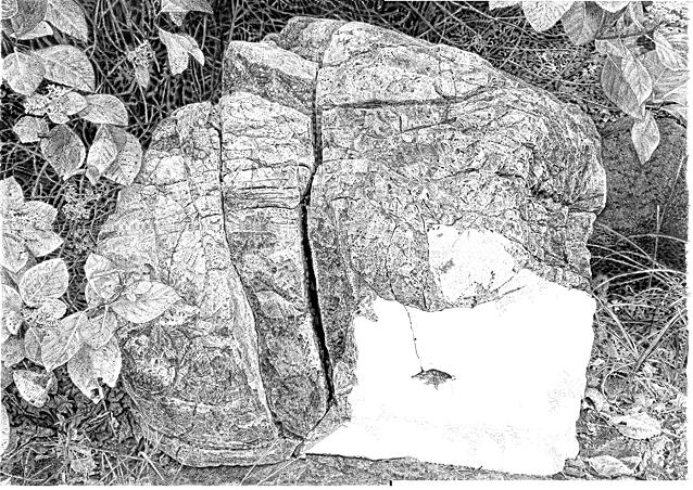 石を描く途中経過.jpg