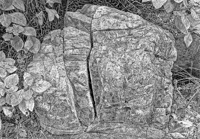 石を描く_1ブログ用.jpg